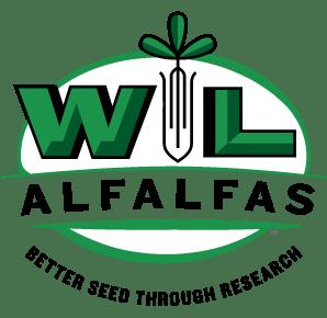 WL Research