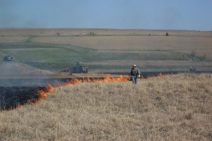 PrescribedBurning