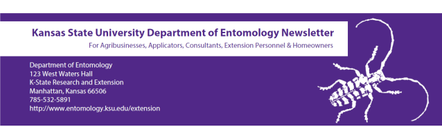 KSU Entomology Newsletter