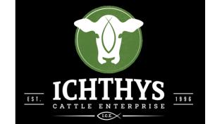 ICHTHYS Cattle