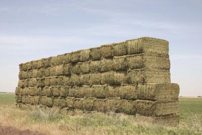 sTACKED hAY bALES