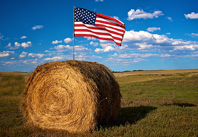American flag in bale of hay in farm field