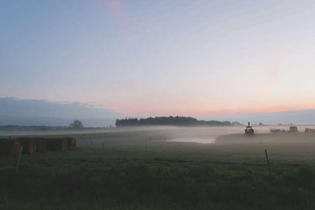 3081738-field_fog_foggy_grass_hay-bales_hay-field_landscape_mist